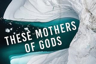 REVIEW: RACHEL BOWER'S 'THESE MOTHERS OF GODS'